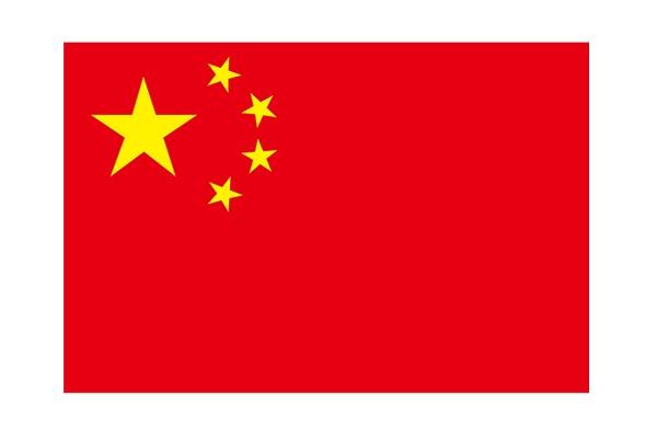 中国 求人 就職