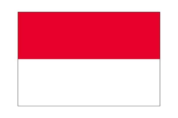 インドネシア 求人 就職