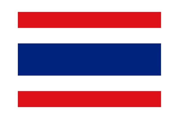 タイ語 タイ人 求人 就職